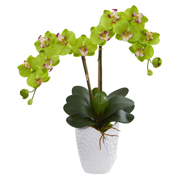 Double Phalaenopsis Orchid in White Vase - SKU #1480 - 7