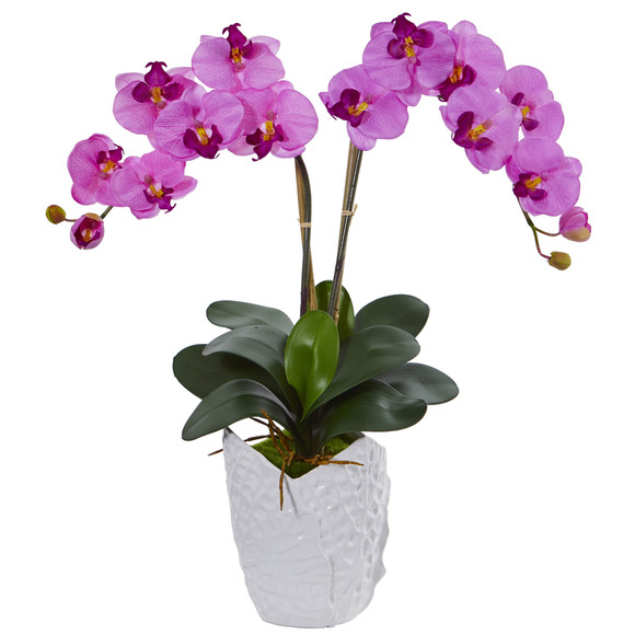 Double Phalaenopsis Orchid in White Vase - SKU #1480 - 5