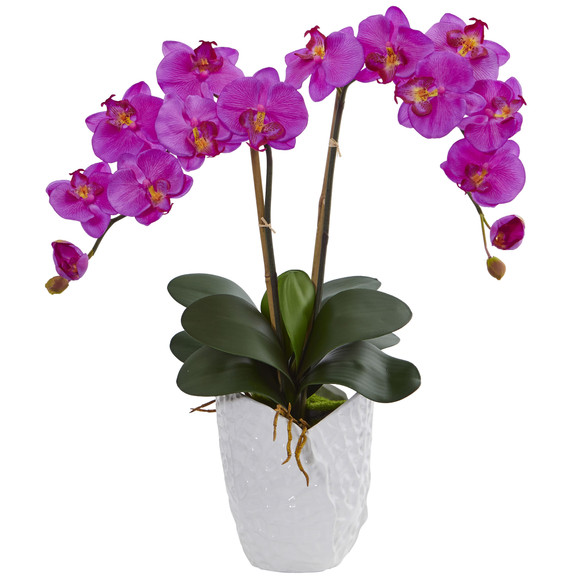 Double Phalaenopsis Orchid in White Vase - SKU #1480 - 1