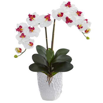 Double Phalaenopsis Orchid in White Vase - SKU #1480