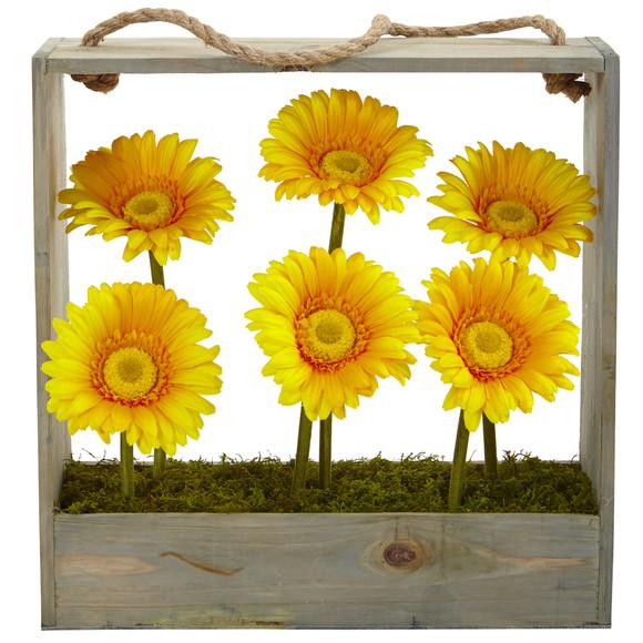 Gerber Daisy Garden in Hanging Frame - SKU #1482 - 3
