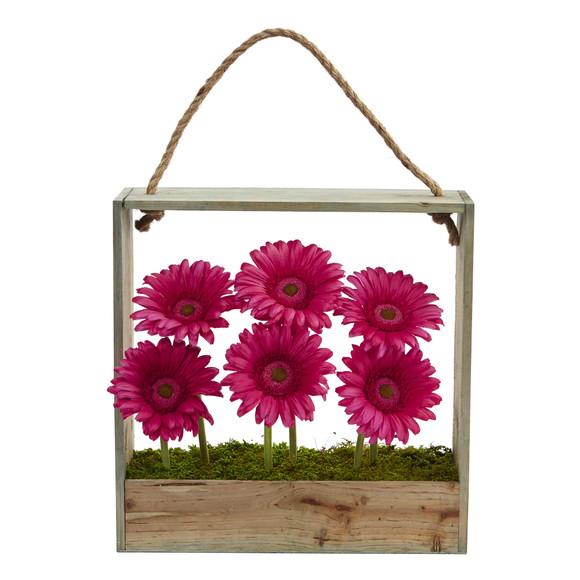 Gerber Daisy Garden in Hanging Frame - SKU #1482