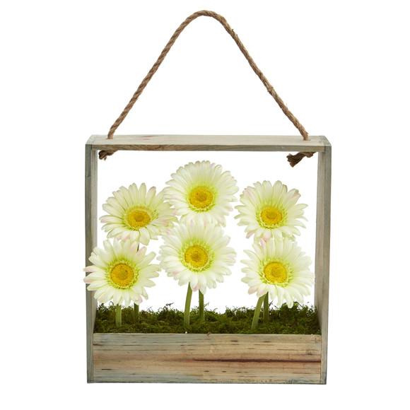 Gerber Daisy Garden in Hanging Frame - SKU #1482 - 6