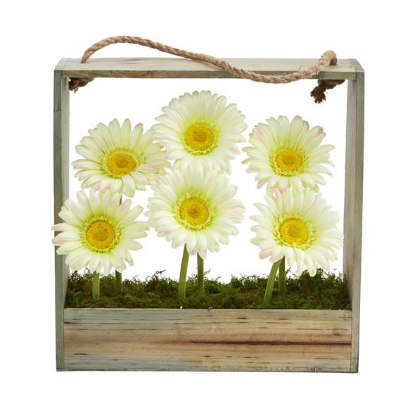 Gerber Daisy Garden in Hanging Frame - SKU #1482 - 7