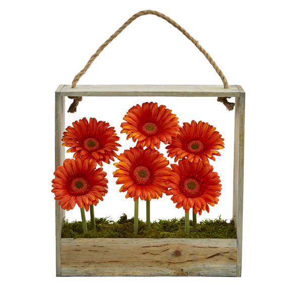 Gerber Daisy Garden in Hanging Frame - SKU #1482 - 8