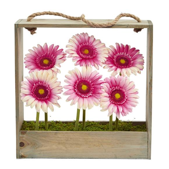 Gerber Daisy Garden in Hanging Frame - SKU #1482 - 5