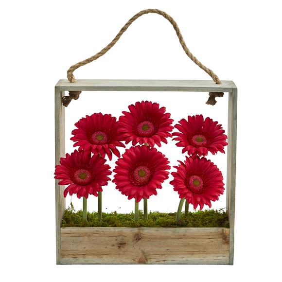 Gerber Daisy Garden in Hanging Frame - SKU #1482 - 2