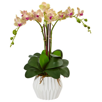 Phalaenopsis Orchid Arrangement in White Vase - SKU #1489