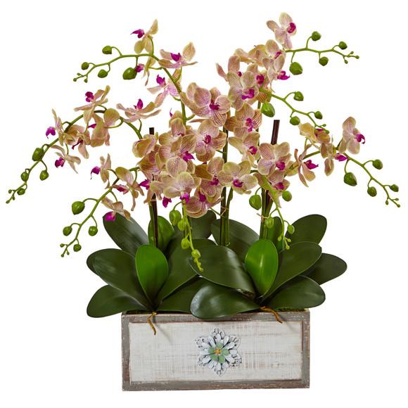 Phalaenopsis Orchid Arrangement in Decorative Wood Vase - SKU #1491