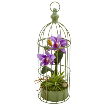 Cattleya Orchid Arrangement in Bird Cage - SKU #1492-PP