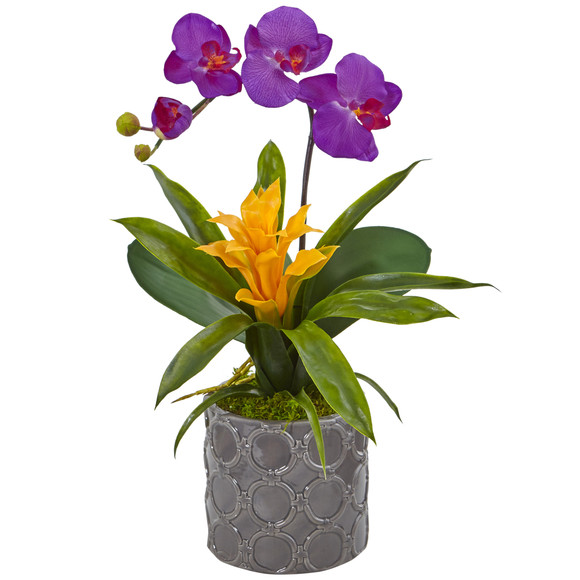 Mini Phalaenopsis Orchid and Bromeliad in Gray Vase - SKU #1493