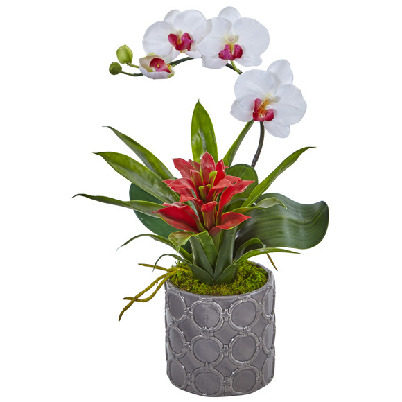 Mini Phalaenopsis Orchid and Bromeliad in Gray Vase - SKU #1493 - 1