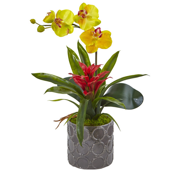 Mini Phalaenopsis Orchid and Bromeliad in Gray Vase - SKU #1493 - 2