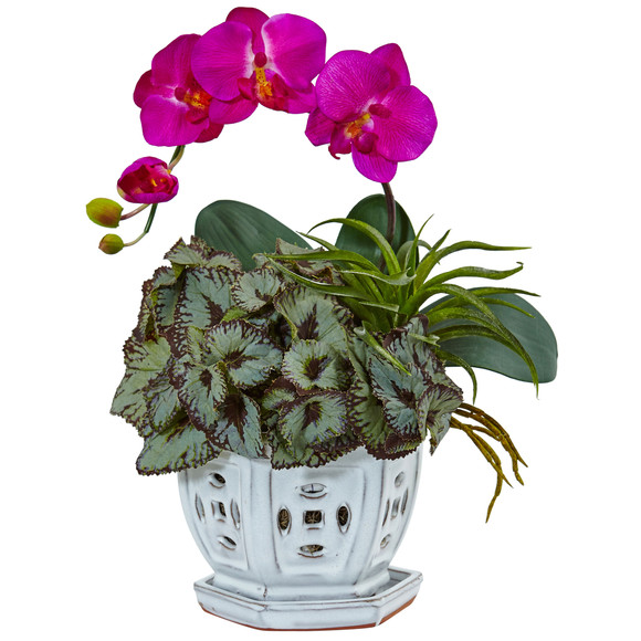 Mini Phalaenopsis Orchid and Succulent in Planter - SKU #1507-OR