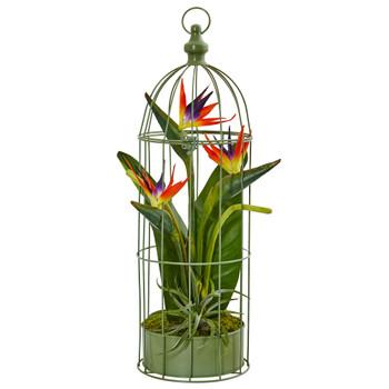 Birds of Paradise in Bird Cage - SKU #1509