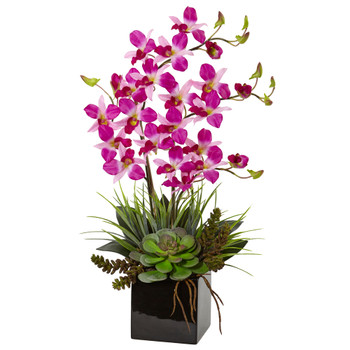 Orchid and Succulent Arrangement in Black Vase - SKU #1511-PP