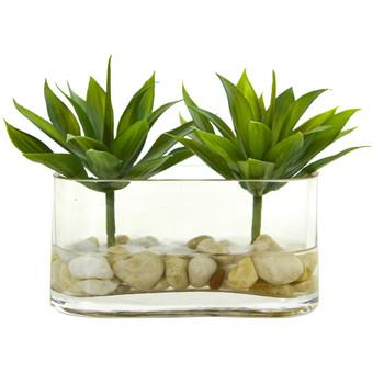 6.5 Mini Agave Succulent Artificial Arrangement in Glass Vase - SKU #1532