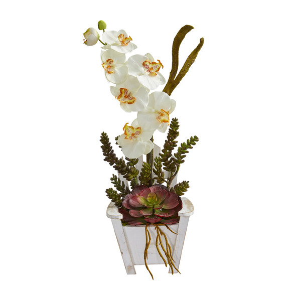 Phalaenopsis Orchid Succulent Artificial Arrangement in Chair Planter - SKU #1584 - 10