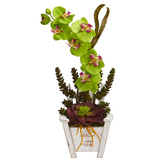 Phalaenopsis Orchid Succulent Artificial Arrangement in Chair Planter - SKU #1584 - 14