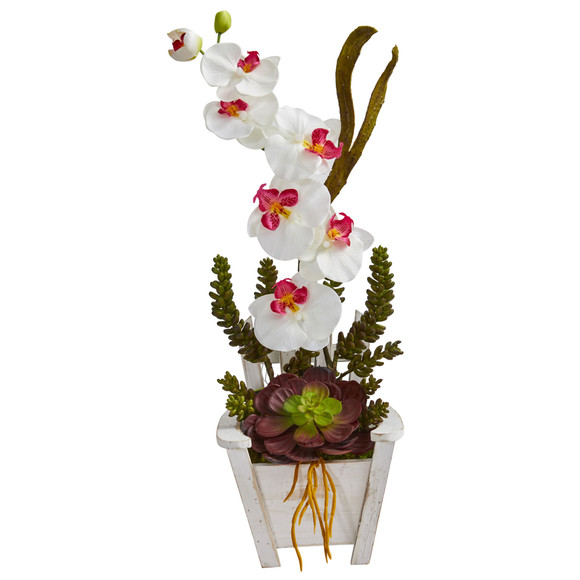 Phalaenopsis Orchid Succulent Artificial Arrangement in Chair Planter - SKU #1584 - 4