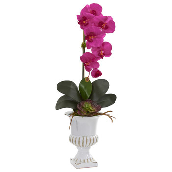 Phalaenopsis Orchid and Succulent Artificial Arrangement in Urn - SKU #1604