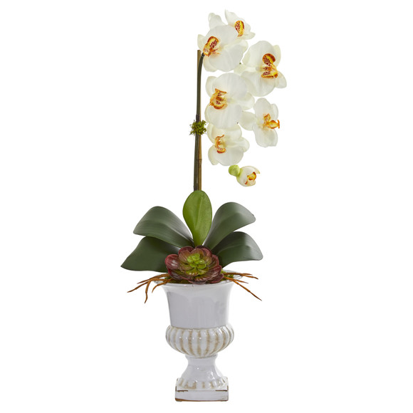 Phalaenopsis Orchid and Succulent Artificial Arrangement in Urn - SKU #1604 - 5