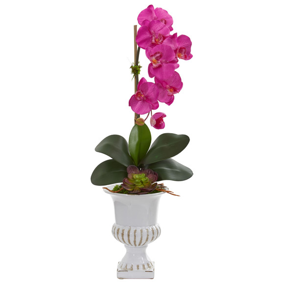 Phalaenopsis Orchid and Succulent Artificial Arrangement in Urn - SKU #1604 - 3