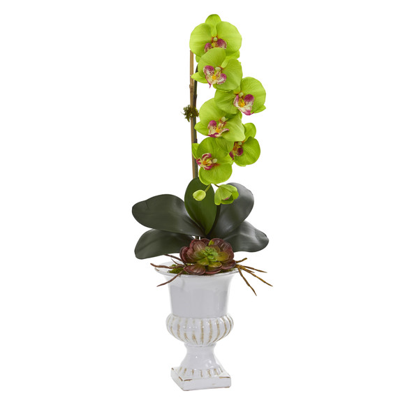 Phalaenopsis Orchid and Succulent Artificial Arrangement in Urn - SKU #1604 - 7
