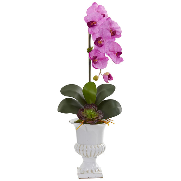 Phalaenopsis Orchid and Succulent Artificial Arrangement in Urn - SKU #1604 - 6