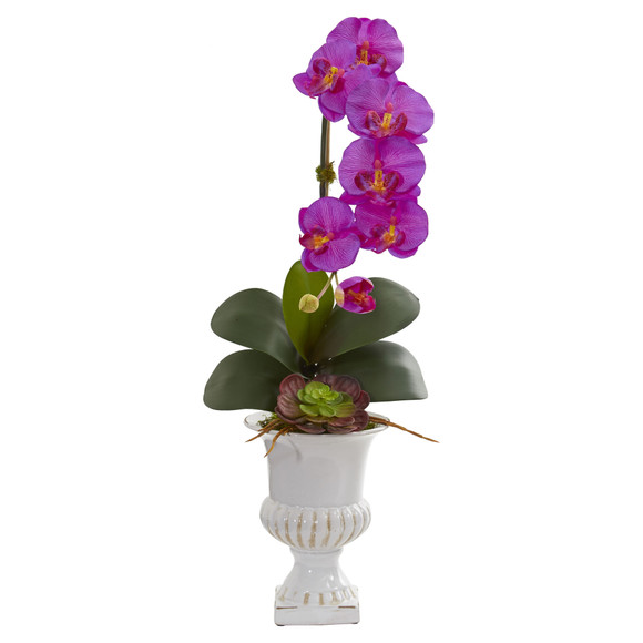 Phalaenopsis Orchid and Succulent Artificial Arrangement in Urn - SKU #1604 - 1