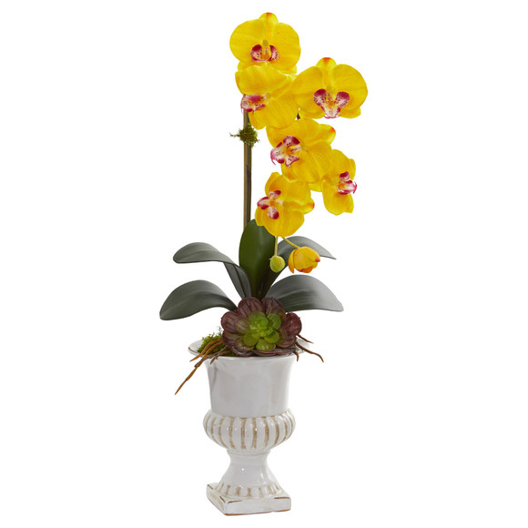 Phalaenopsis Orchid and Succulent Artificial Arrangement in Urn - SKU #1604 - 4