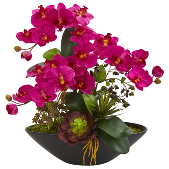 Phalaenopsis Orchid and Mixed Succulent Garden Artificial Arrangement in Black Vase - SKU #1605