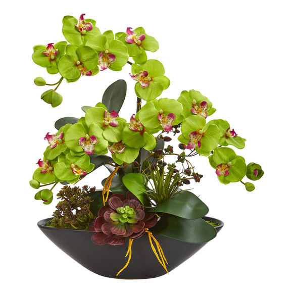 Phalaenopsis Orchid and Mixed Succulent Garden Artificial Arrangement in Black Vase - SKU #1605 - 6