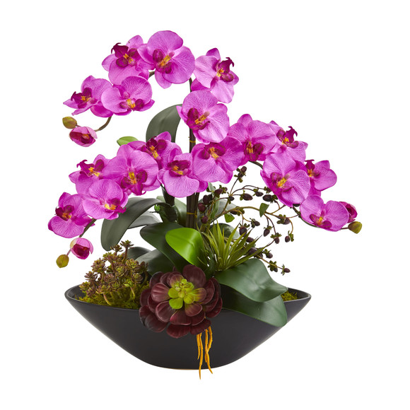 Phalaenopsis Orchid and Mixed Succulent Garden Artificial Arrangement in Black Vase - SKU #1605 - 5