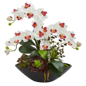 Phalaenopsis Orchid and Mixed Succulent Garden Artificial Arrangement in Black Vase - SKU #1605-WH