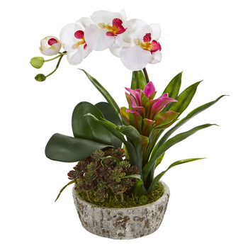 Orchid Bromeliad and Succulent Artificial Arrangement in Planter - SKU #1606-WP