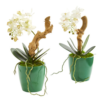 Mini Phalaenopsis Orchid Artificial Arrangement in Green Planter Set of 2 - SKU #1644-S2