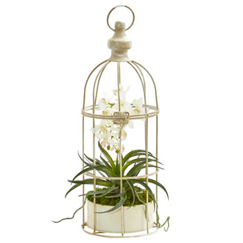 Mini Phalaenopsis Orchid Artificial Arrangement in Bird Cage - SKU #1677