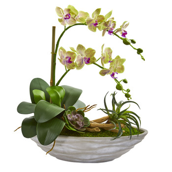 Phalaenopsis Orchid and Succulent Artificial Arrangement in White Vase - SKU #1714