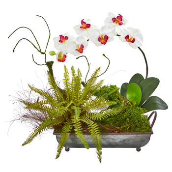 Phelaenopsis Orchid and Fern Artificial Arrangement in Metal Tray - SKU #1893-WH