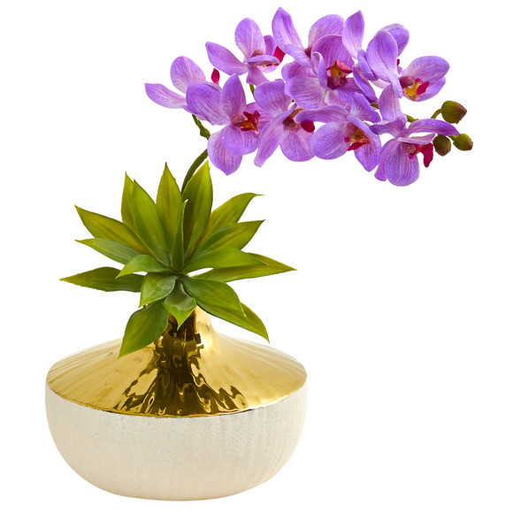 Phalaenopsis Orchid and Agave Artificial Arrangement in Vase - SKU #1955 - 2