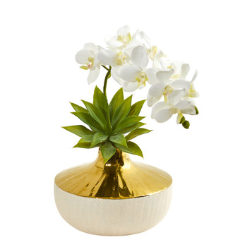 Phalaenopsis Orchid and Agave Artificial Arrangement in Vase - SKU #1955