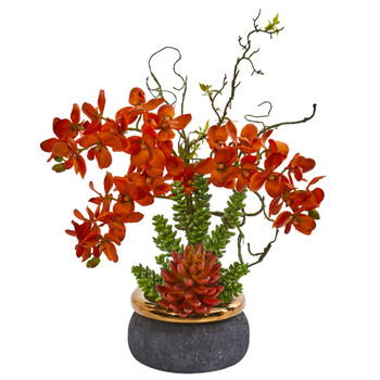 Autumn Phalaenopsis Orchid and Succulent Artificial Arrangement in Vase - SKU #1972