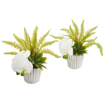 13 Phalaenopsis Orchid Agave and Fern Artificial Arrangement Set of 2 - SKU #1978-S2