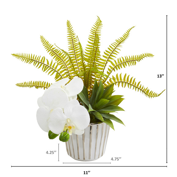 13 Phalaenopsis Orchid Agave and Fern Artificial Arrangement Set of 2 - SKU #1978-S2 - 1