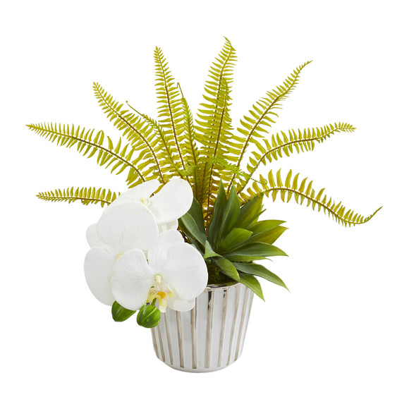 13 Phalaenopsis Orchid Agave and Fern Artificial Arrangement Set of 2 - SKU #1978-S2 - 2