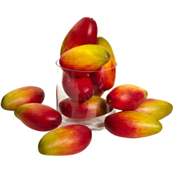 5.5 Weighted Faux Mango Set of 12 - SKU #2190-S12