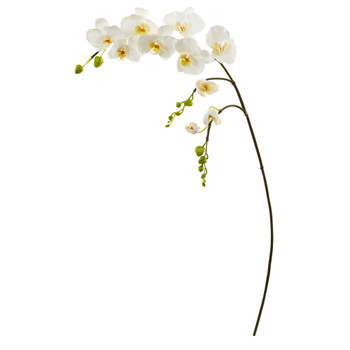 43 Phalaenopsis Orchid Artificial Flower Set of 6 - SKU #2324-S6-WH