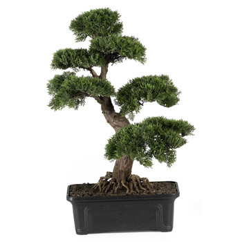Cedar Bonsai 24 Silk Plant - SKU #4103