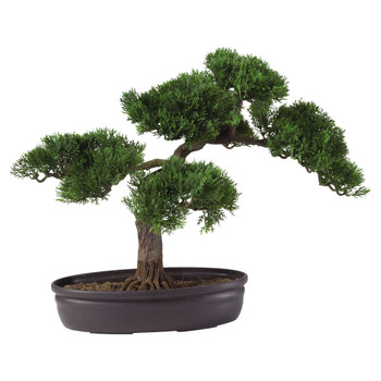 Cedar Bonsai 16 Silk Plant - SKU #4106